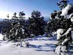 snieg_01.jpg