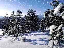 snieg_03.jpg